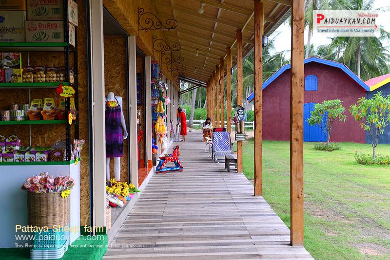 ซื้อของฝากกันที่ ฟาร์มแกะพัทยา Pattaya Sheep Farm