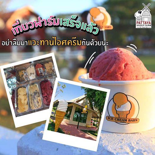 ร้อนนักพักกินไอครีม ฟาร์มแกะพัทยา Pattaya Sheep Farm