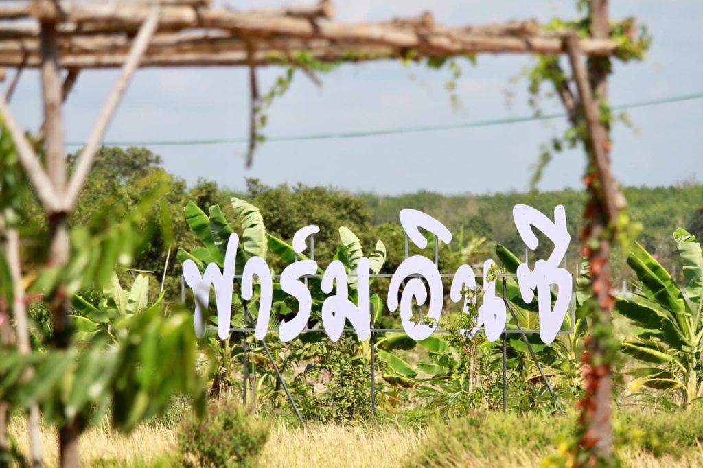 Farm in C-Coffee  แนวเกษตรอินทรีย์   ระยอง