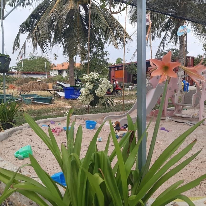 Farm in C-Coffee  แนวเกษตรอินทรีย์  สนามเด็กเล่นของเด็กๆ