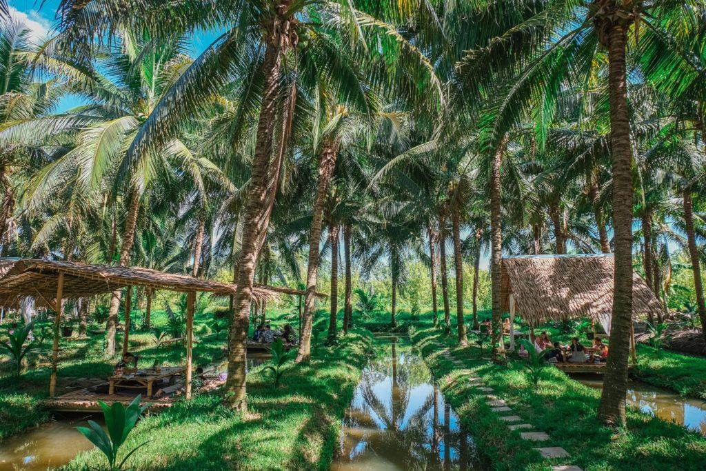 พร้าวหอม คาเฟ่ (PhraoHom cafe) กลางป่ามะพร้าว