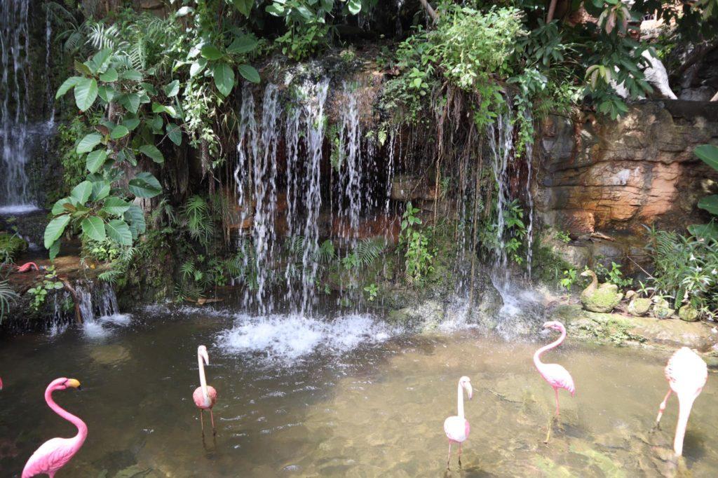 88Coffee in khaoyai น้ำตกสวยๆ