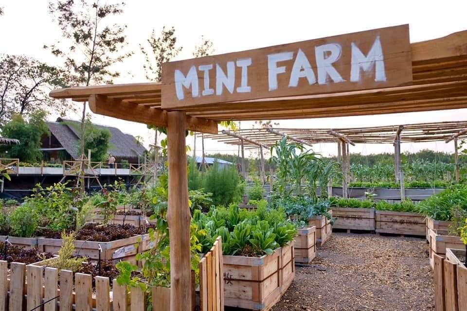 Craft Land คาเฟ่เล็กๆกลางสวนผัก