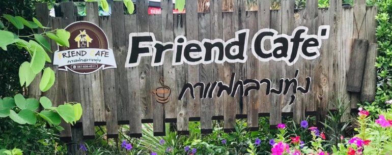 Friend Cafe กาแฟกลางทุ่ง ชมธรรมชาติที่น่าหลงใหล @ชัยนาจ