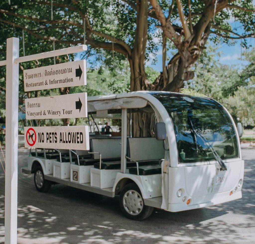 ไร่พีบี วัลเล่ย์ (PB Valley) บริการรถพาชมสวนองุ่น