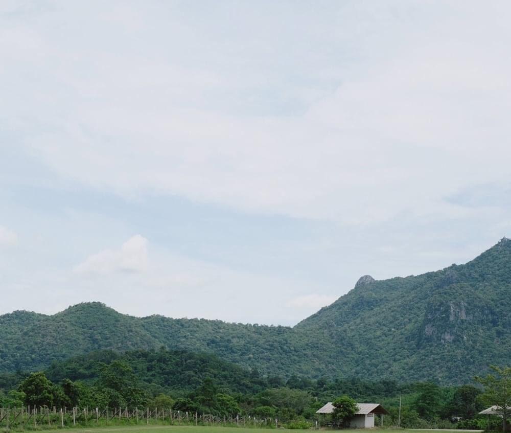 ไร่พีบี วัลเล่ย์ (PB Valley) ภูเขาสีเขียว