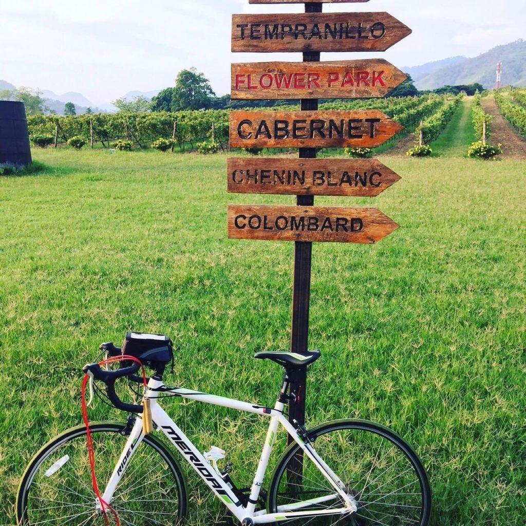 ไร่พีบี วัลเล่ย์ (PB Valley) ขี่จักรยานชมสวน