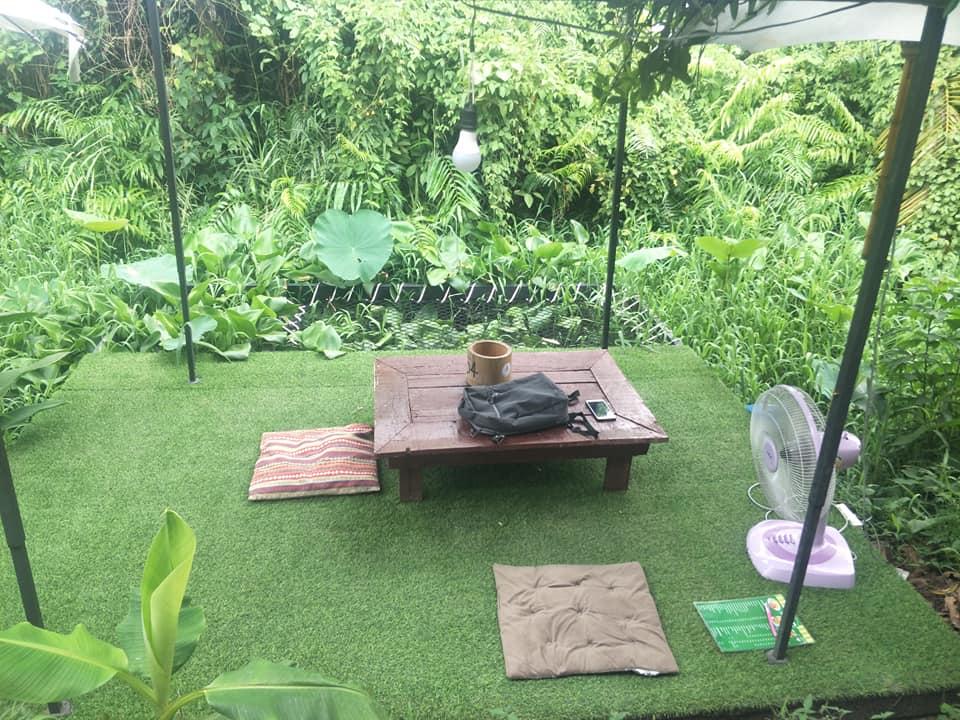 Mango 88 Cafe' & Bazaar' คาเฟ่ริมน้ำ  ปากเกร็ด นนทบุรี