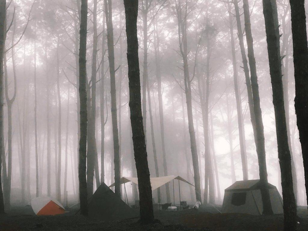 นอนแคมป์ปิ้ง ภูหินร่องกล้า หน้าฝน ที่พิษณุโลก