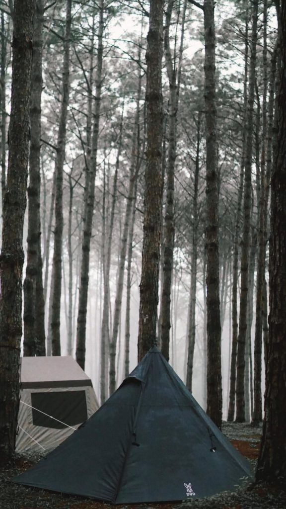 นอนแคมป์ปิ้ง ภูหินร่องกล้า สุดฟิน