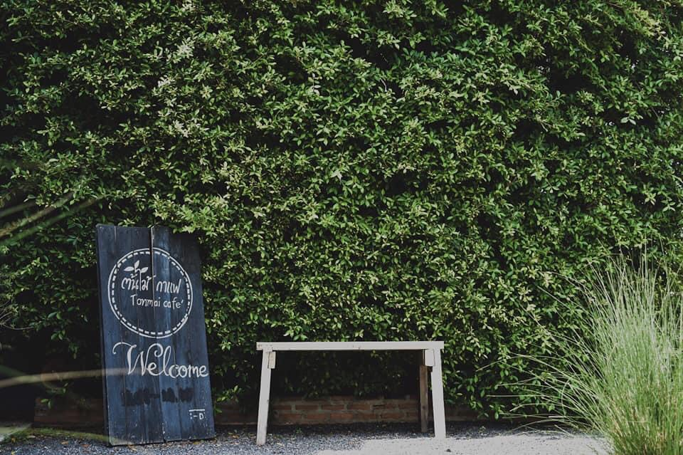 ต้นไม้คาเฟ่ (Tonmai cafe') ยินดีต้อนรับ