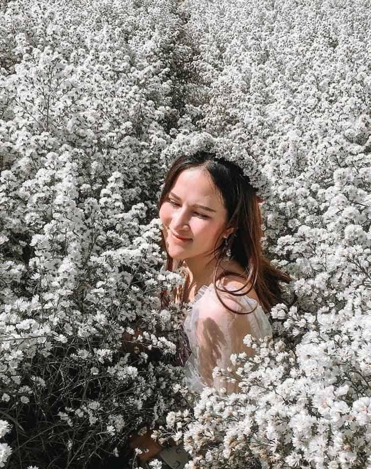 สวนลุงรน จังเชียงใหม่ ดอกไม้สวย