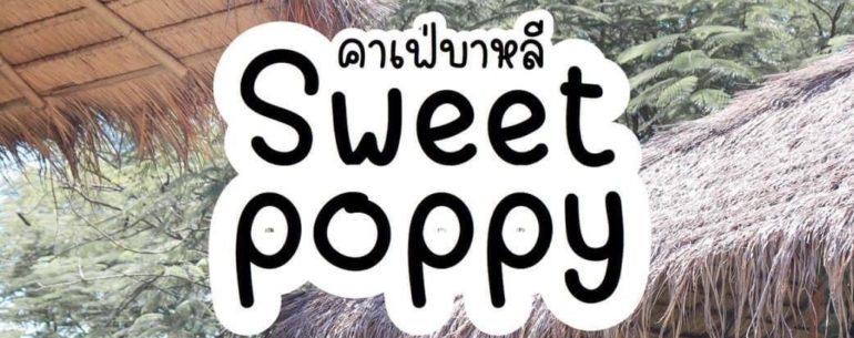 Sweet Poppy คาเฟ่สวยตกแต่งสไตล์บาหลี ได้ฟีลเหมือนนั่งอยู่ริมหาด @นนทบุรี