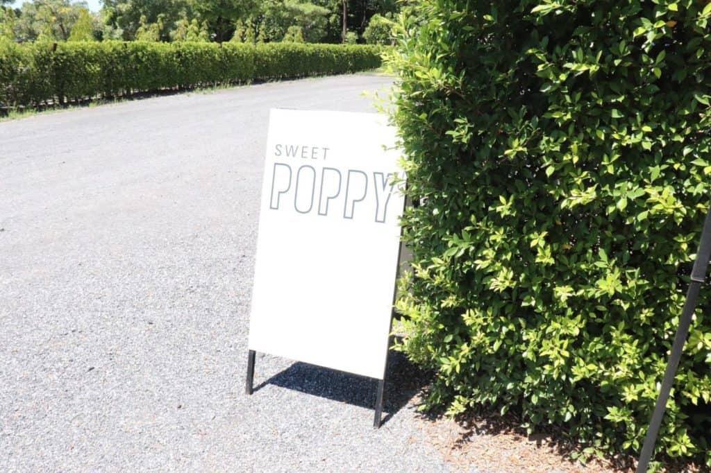 Sweet Poppy ยินดีต้อนรับ