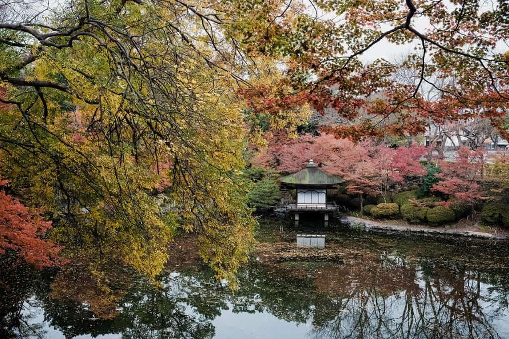 สถานที่ท่องเที่ยววากายาม่า ประเทศญี่ปุ่นที่บอกเลยว่าบรรยากาศดีและมีความน่าเที่ยวสุด ๆ สถานที่ท่องเที่ยวที่สองที่แอดอยากจะมาแนะนำ คือ สวน Nishinomaru-Teien
